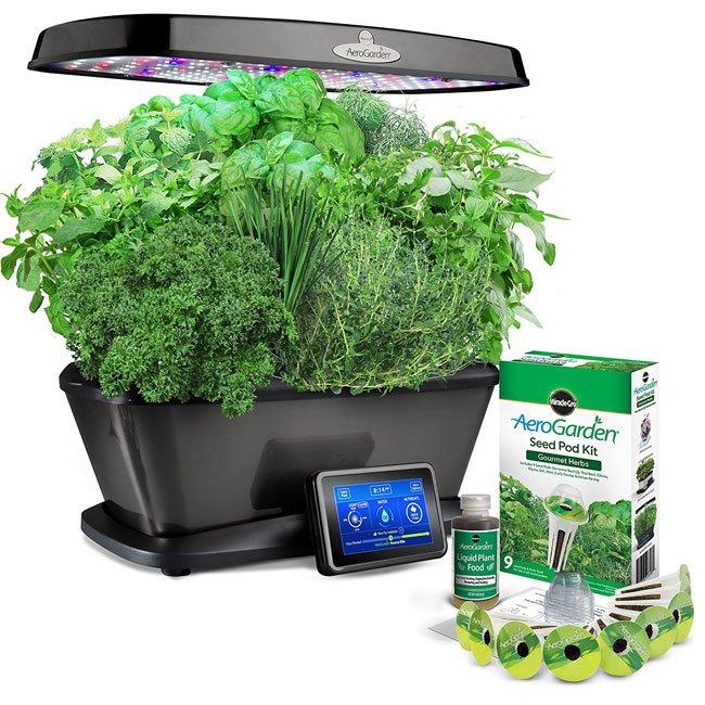 Miracle Gro AeroGarden BountyHow to Grow Weed in your AeroGarden   AeroWeed info. Aerogarden Weed Harvest. Home Design Ideas