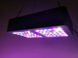 viparspectra-300w-led-grow-light-on